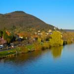 laderas verdes del Neckar